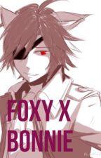 Foxy X Bonnie by HareMenjou