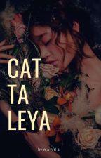 Cattaleya by Faxalayriz