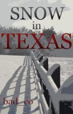 Snow in Texas by bad_co