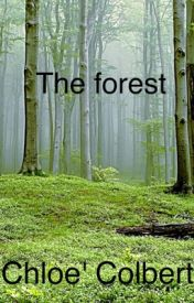 The Forest by newsie_chloe