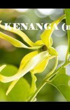 KENANGA (n) by momomalili