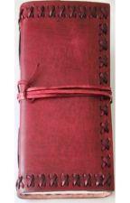 Top secret: Darien Valentine's Journal by Emmiie
