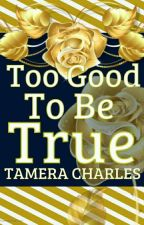 Too Good To Be True by tamera_charles