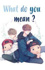 WHAT DO YOU MEAN ? [Chanbaek | Hunhan ] by kangbihun