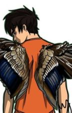 Wings Meet the Sea (Percy Jackson and Maximum Ride Fan Fiction) by MolMcN