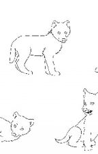 Chima x wolf/human reader by colliegirl11