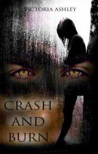 Crash And Burn by Hooha84