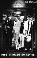 Mes Princes En Corée. {TERMINE} by cxmille_dslx
