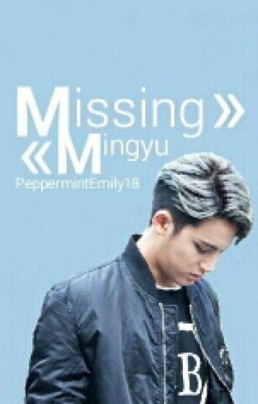 «Missing Mingyu»