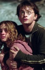 Harry & Hermione: The Way It Should Have Been Part 1 by CharlieTurner5