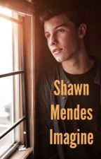 Shawn Mendes Imagines by Story_for_you__