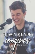 Shawn Mendes Imagines by horrorshawn
