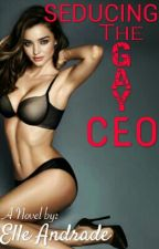 Seducing The Gay CEO (COMPLETED) by ElleAndrade