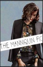 The mannequin fic L. S. by indiloveslarry