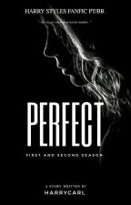 Perfect [HS]#Wattys2016 by AngelGrimesStyles