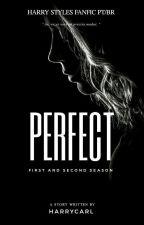 Perfect [HS]#Wattys2017  by HarryCarl