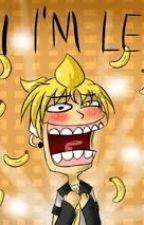 Len's Diary by Yume-Kagami