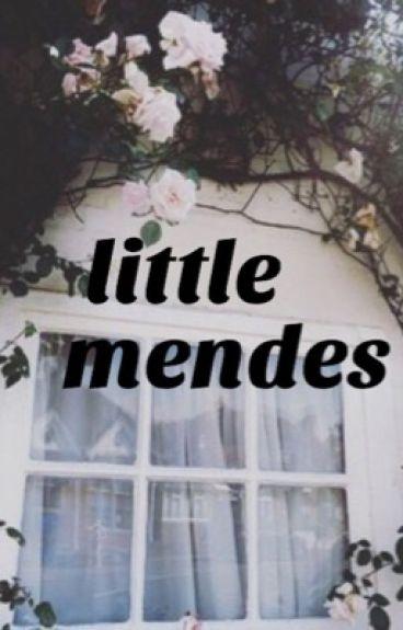 little mendes // hayesgrier
