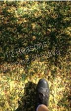 12 Reasons by jozhnv