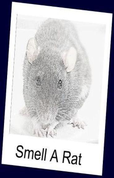 Smell a Rat...