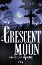 the Crescent Moon  by Leverance