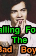 Falling For The Bad Boy (Harry Styles Fanfic) by wifilarry