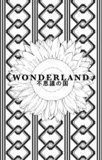 wonderland 「 jungkook 」 by holdontilltae