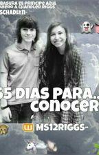 """""""365 Dias para...Conocerte"""" by MS12riggs"""
