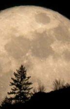 Sabda Kata, Asa, Cita, dan Cinta by irfanins