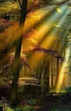 Осенний ветер by Satsuki-chun-chun