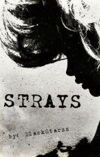 Strays by BlackStarzz