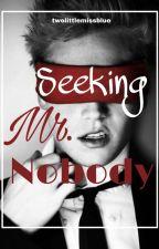 Seeking Mr. Nobody by TwoLittleMissBlue