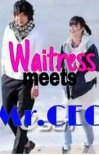 Waitress Meets Mr. CEO by theredrosegirl