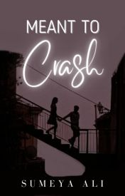 Meant to Crash *slow updates* by AlisonJSummers