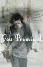You Promised by LouisAndHarry4321
