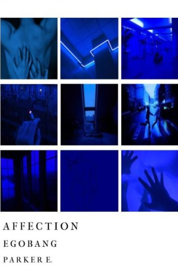 affection :・゚✧ egobang