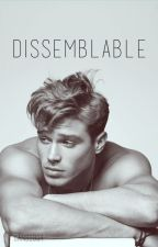 Dissemblable by Cans1994