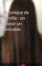 chronique de camille : un amour un pensable by 213x785