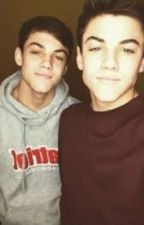 Doubling Dolan (A Dolan Twin Fanfiction) by BrooklynSmith1997