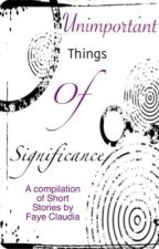 The Unimportant Things of Significance by FayeClaudia
