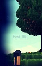 Past life {Discontinued} by LadyTigress28
