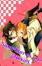 Saru-Kun es un ... ¿¡Neko!? [Sarumi] [K-Project] by xAhri_Chan