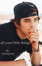 all your little things - hg by cutiegriers