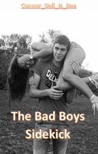 The Bad Boys Sidekick by dancing_in_the_rainn