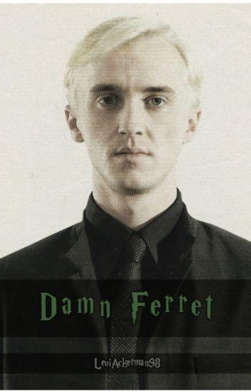 Estúpido hurón (Draco Malfoy y ____ Potter) [CANCELADA]
