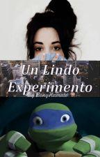 Un Lindo Experimento // Fanfic de TMNT by BonyHamato