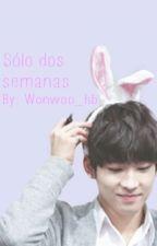 Sólo dos semanas by wonwoo_hb