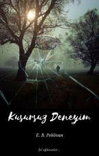 Kusursuz Deneyim (Kitap Oluyor) by SpyPrince