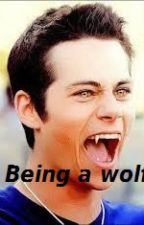 Being a wolf by Aboutstydia