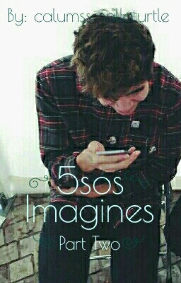 5sos Imagines 2
